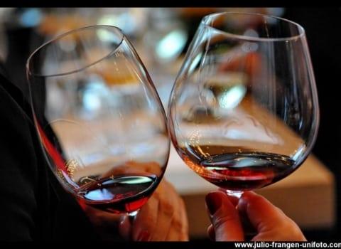 RIEDEL prezentacija čaša u MIVA galeriji vina 22
