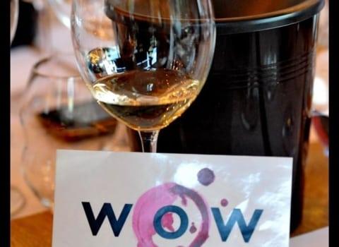 RIEDEL prezentacija čaša u MIVA galeriji vina 11
