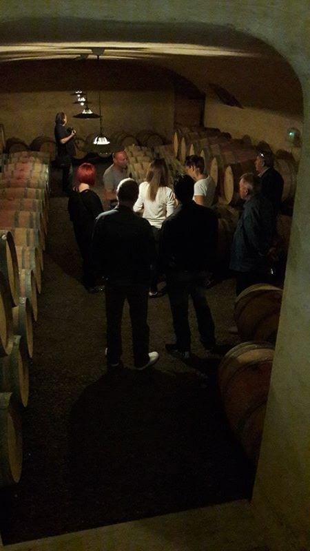 Lessons from Slovenia A Visit to the Jakončič Winery VI