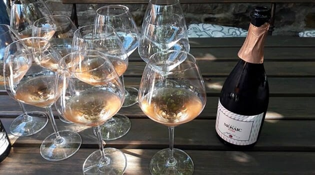 Lessons from Slovenia A Visit to the Jakončič Winery VIII