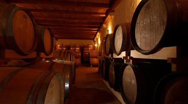 Renewal of Antique Wine Philosophy in Kabola Winery