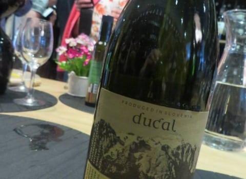 WOW u vinoteci Vivat fina vina 13