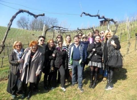 Grupna u vinogradu Sattler u Gamlitzu