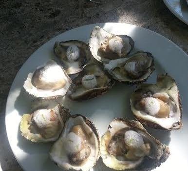 Hrana kod Bibicha - kamenice