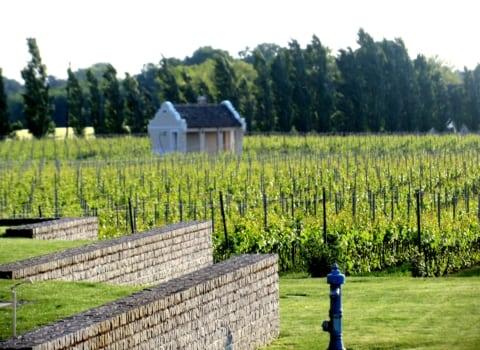 WOWice u posjeti: impresivna vinarija Zvonko Bogdan 10