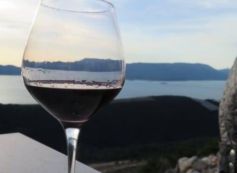 Splitski WOW na svom prvom izletu: vinarija Rizman 3