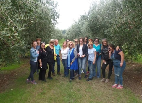 Vodnjan, oaza dobrih maslinovih ulja i još boljih vina 14