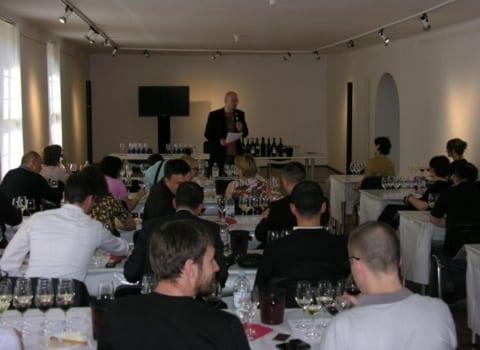 ZWGW 2013, radionica Renesansna vina Hercegovine, blogera Nenada Trifunovića - Vinopije 8