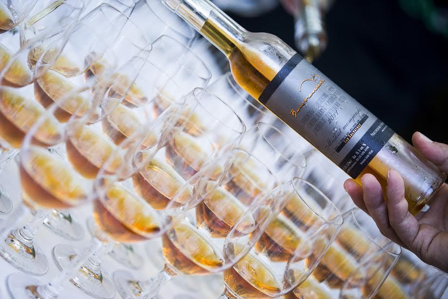 Vinarija Benvenuti među 100 vinarija svijeta na konferenciji Wine Vision u Kaliforniji 1
