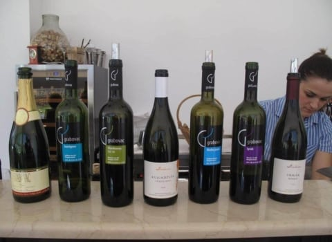 WOW-ice u obilasku imotskog vinogorja 12