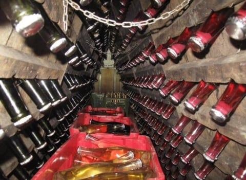 WOW-ice u obilasku imotskog vinogorja 8