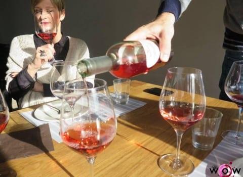 Splitski WOW na svom prvom izletu: vinarija Rizman 13