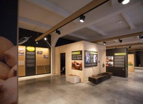 Maslinovo ulje zaslužilo mjesto u – muzeju 2