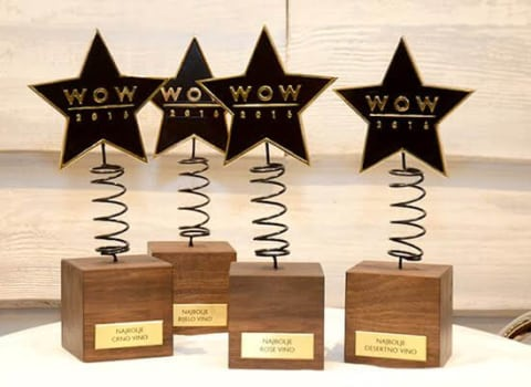"""Proslavljen šesti rođendan udruge WOW, obilježeno finale akcije Što žene žele, dodijeljene nagrade - i još puno """"lipih"""" stvari 13"""