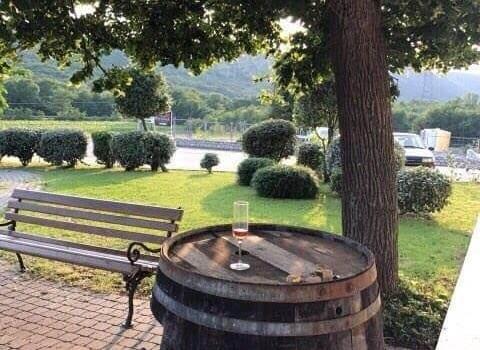 Primorsko – istarske WOW-ice posjetile vinariju Pavlomir 4