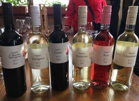 Baranja – vinska majka i domovina vinskih kraljica 7