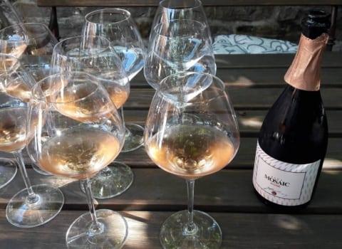 Posjet vinaru Jakončiču u Goriškim brdima: Užitak za sva čula 1