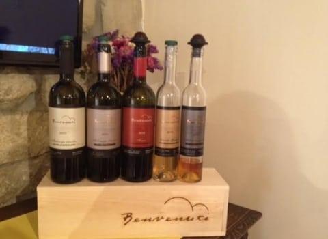 Istarske vinske priče 3