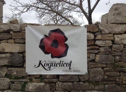 Istarske vinske priče 4